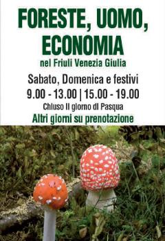 Foreste, Uomo, Economia nel Friuli Venzezia Giulia