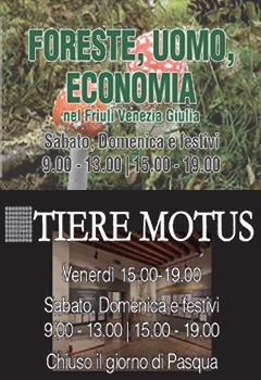 tiere-motus+FUE